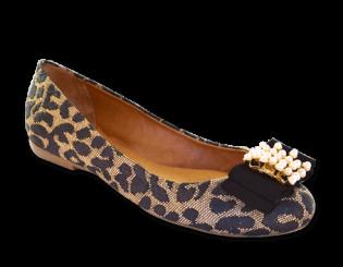 Sapato Ferruci 014